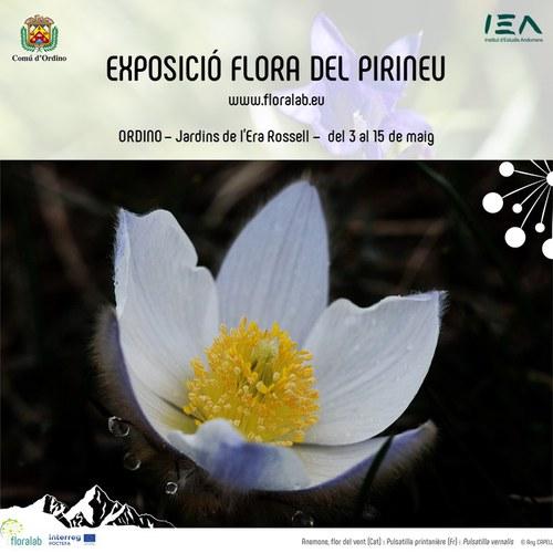 Mostra itinerant 'Flora del Pirineu'