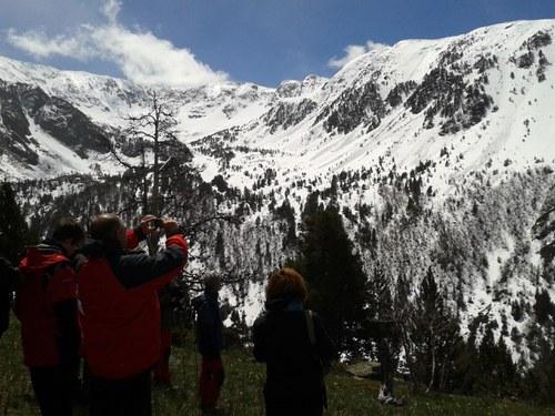 V Jornada de la biodiversitat d'Andorra