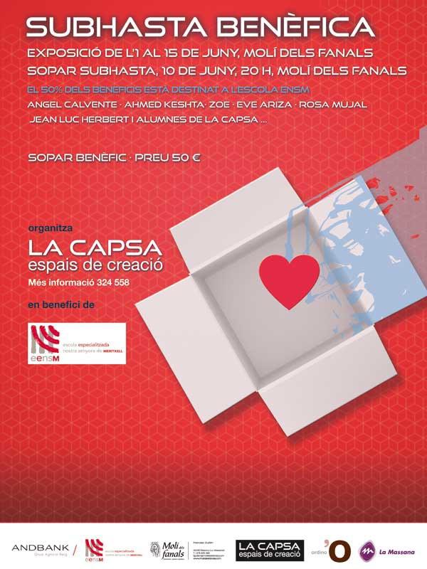 Sopa benèfic La Capsa 2015
