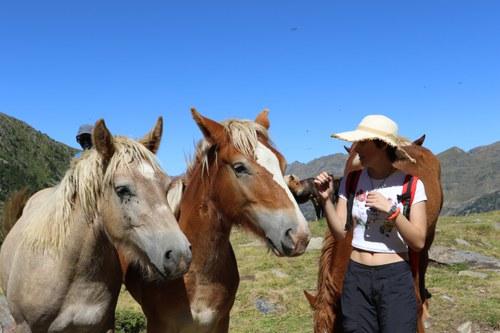 Descobreix la ramaderia de muntanya a les saleres de l'Estanyó